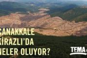 45 bin dendi ama 195 bin ağaç kesildi