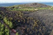 Ayvalık'ta 80 hektar ormanlık yandı